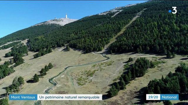 Mont Ventoux : le Géant de Provence devient un Parc Naturel Régional
