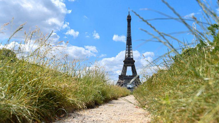 La tour Eiffel, vue depuis le Champ-de-Mars, le 25 mai 2020. (JULIEN MATTIA / LE PICTORIUM / MAXPPP)