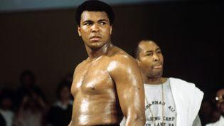 Mohamed Ali lors d'un entraînement à Munich (Allemagne), le 15 mai 1975. (ISTVAN BAJZAT / DPA / AFP)