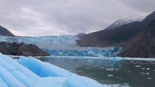 Alaska : le merveilleux sanctuaire des baleines à bosse (France 2)