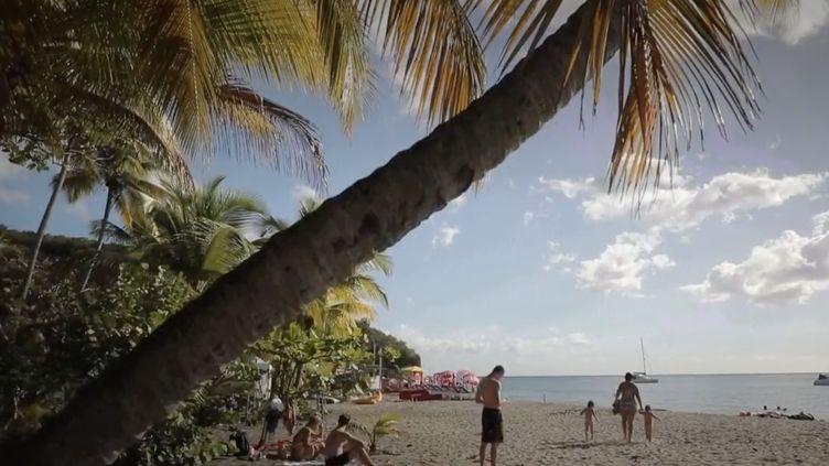 Nouvel An : un réveillon aux Antilles. (Capture d'écran/France 3)