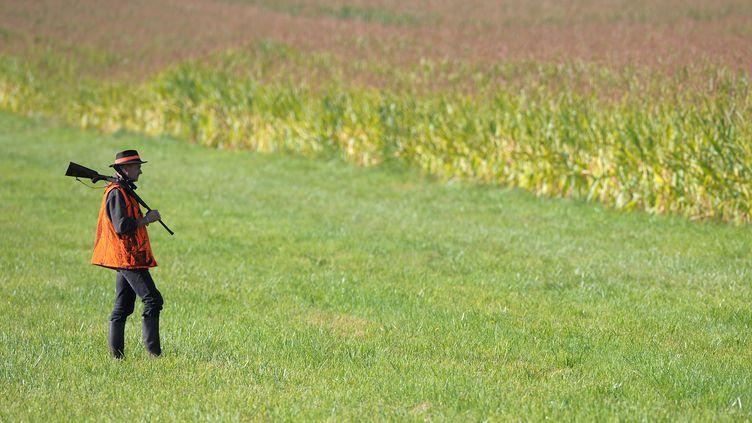 Un chasseur participe à une battue, près de Menchhoffen (Bas-Rhin), le 4 septembre 2010. (FREDERICK FLORIN / AFP)