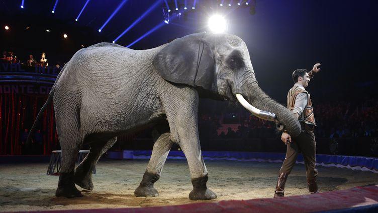 Le dresseyrJozsef Richter en spectacle avec un éléphant durant le gala du 42e festival international du cirque de Monte-Carlo, à Minaco, le 23 janvier 2018. (CLAUDE PARIS / POOL)