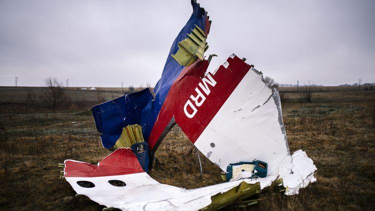 Un morceau déchiqueté de la carlingue du Boeing 777 de la Malaysia Airlines, après le crash, le 10 novembre 2014, près deHrabove dans l'est de l'Ukraine. (DIMITAR DILKOFF / AFP)