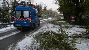 1 000 techniciens sont mobilisés en Drôme-Ardèche le 18 novembre pour rétablir l'électricité après les importantes chutes de neige du 15 novembre. (JEAN-PHILIPPE KSIAZEK / AFP)
