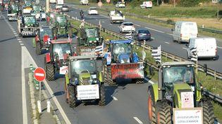 Des agriculteurssur la rocade de Rennes (Ille-et-Vilaine) en direction de Paris pour aller manifester, le 2 septembre 2015. (MAXPPP)
