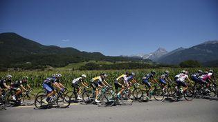 Le peloton du Tour de France lors de la 17e étape, en Suisse, le 20 juillet 2016. (MAXPPP)