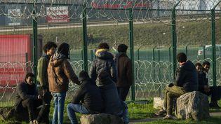 Des migrants à Calais (Pas-de-Calais), le 12 janvier 2018. (PHILIPPE HUGUEN / AFP)