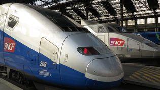 Deux trains attendent en gare de Lyon, à Paris, le 12 octobre 2016. (PASCAL DELOCHE / GODONG / AFP)