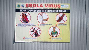 Ces panneaux d'information, installés dans les locaux de la mission de paix de l'ONU en République démocratique du Congo, alertent sur les modes de contamination et la prévention de la maladie Ebola. Photo prise le 5septembre 2019 dans la ville de Goma (RDC) (KAY NIETFELD / DPA)
