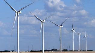 Des éoliennes à Beauvilliers (Eure-et-Loir). (JEAN-FRANCOIS MONIER / AFP)