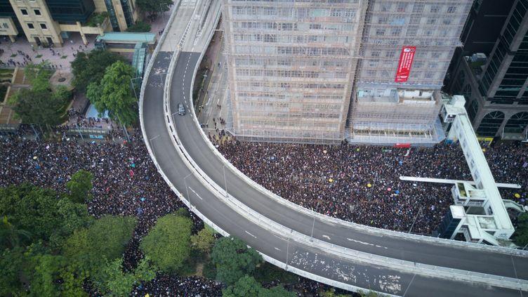 Des manifestants à Hong Kong, le 16 juin 2019. (EYEPRESS NEWS / AFP)