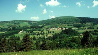 Les monts du Forez, dans la région des Hautes-Chaumes (Puy-de-Dôme, 2001). (AGON MICHEL / MAXPPP)