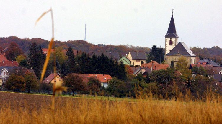 Le 21 octobre 2003, dans la forêt de Galfingue (Haut-Rhin), un agriculteur avait découvert des sacs plastiques contenant les corps de quatre bébés. (MAXPPP)