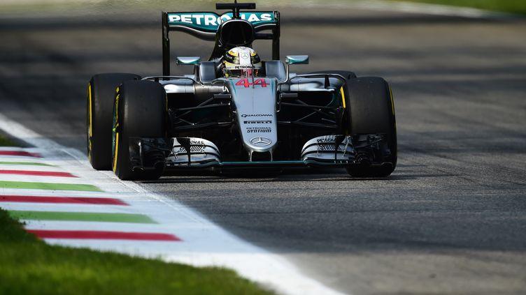 Lewis Hamilton (GIUSEPPE CACACE / AFP)