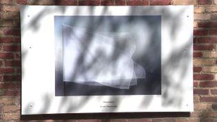 Les photos d'Hélène Marcoz exposées hors-les-murs à Lille tout l'été. (CAPTURE D'ÉCRAN FRANCE 3 / JM. VASCO)