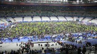 Le public a trouvé refuge sur la pelouse du Stade de France, vendredi 13 novembre. (MATTHIEU ALEXANDRE / AFP)
