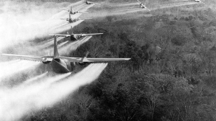 """De 1964 à 1973, pendant la guerre du Vietnam,l'armée américaine a déversé près de 80 millions de litres de défoliant sur les forêts du pays, dont """"l'agent orange"""", un herbicide qui contient de la dioxine, hautement toxique. Photo d'archive. (BRIAN ALBRECHT / MAXPPP)"""