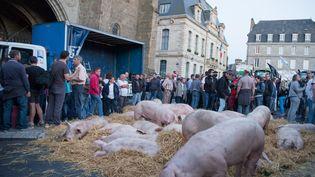 Des agriculteurs et éleveurs manifestent devant la préfecture de Saint-Brieuc le 2 juillet 2015. (CITIZENSIDE/EMMANUELLE RODRIGUE / CITIZENSIDE.COM)
