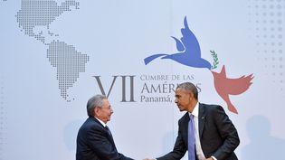 Le président cubain, Raul Castro, et son homologue américain, Barack Obama, le 11 avril 2015 au Panama. (MANDEL NGAN / AFP)