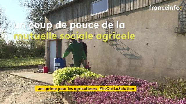 """En Bretagne, les agriculteurs reçoivent une """"aide-covid"""" pour pouvoir garder leurs enfants"""
