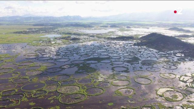 Inde : à la découverte du splendide lac Loktak et ses anneaux de végétation