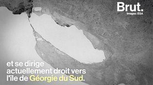 VIDEO. Dans l'Atlantique Sud, le plus gros iceberg au monde se dirige droit vers un territoire britannique (BRUT)