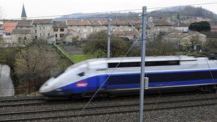 Un TGVpasse à Vandières (Meurthe-et-Moselle), le 22 janvier 2015. (JEAN-CHRISTOPHE VERHAEGEN / AFP)