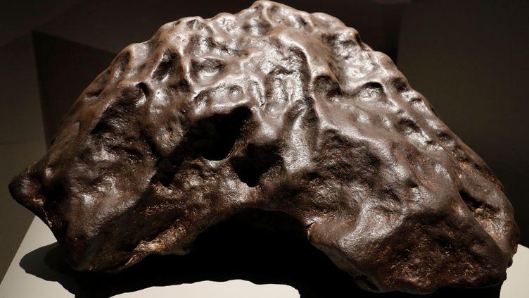 """Une météorite tombée en Algérie en 1864, visible à l'exposition du Musée d'histoire naturelle """"Météorites, entre ciel et Terre"""". (FRANCOIS GUILLOT / AFP)"""