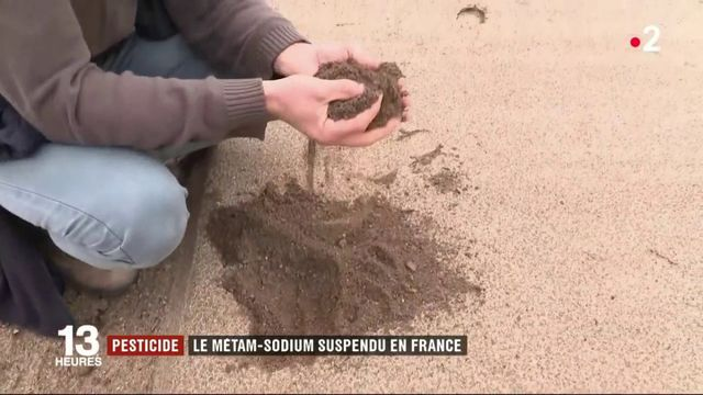 Pesticide : le métam-sodium suspendu en France