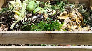Et si notre pays faisait un bond en avant pour le recyclage de tous nos déchets...(Illustration compost) (GETTY IMAGES / MOMENT RF)
