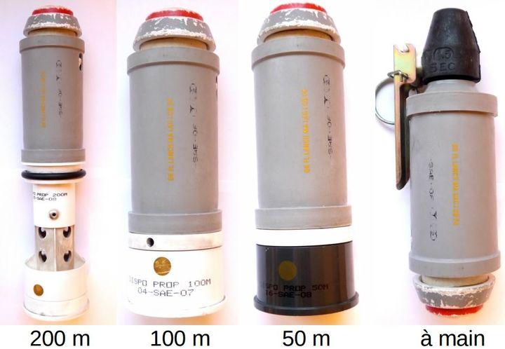 Modèles de GLI F4 classés par portée de tir. (DR)