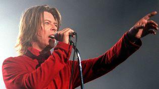 Le chanteur britannique David Bowie, le 17 octobre 1999, lors d'un concert à Vienne (Autriche). (PFARRHOFER HERBERT / APA / AFP)