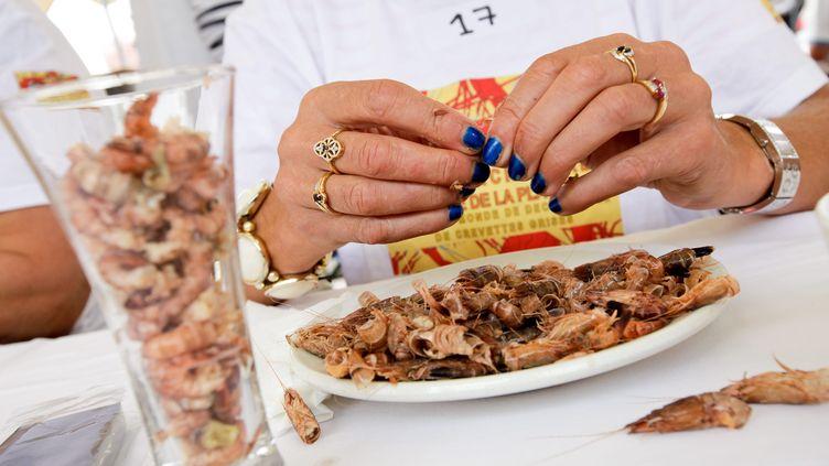 Championnat de décorticage de crevettes grises, à Leffrinckoucke (Nord), dimanche 4 août 2013. (MAXPPP)
