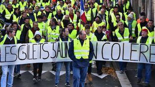 """Une manifestation des """"gilets jaunes"""" à Rochefort (Charente-Maritime), le 24 novembre 2018. (XAVIER LEOTY / AFP)"""