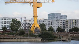 La Grue jaune à Nantes (Loire-Atlantique), près du lieu où le corps de Steve Maia Caniço a été découvert, le 29 juillet 2019. (LOIC VENANCE / AFP)