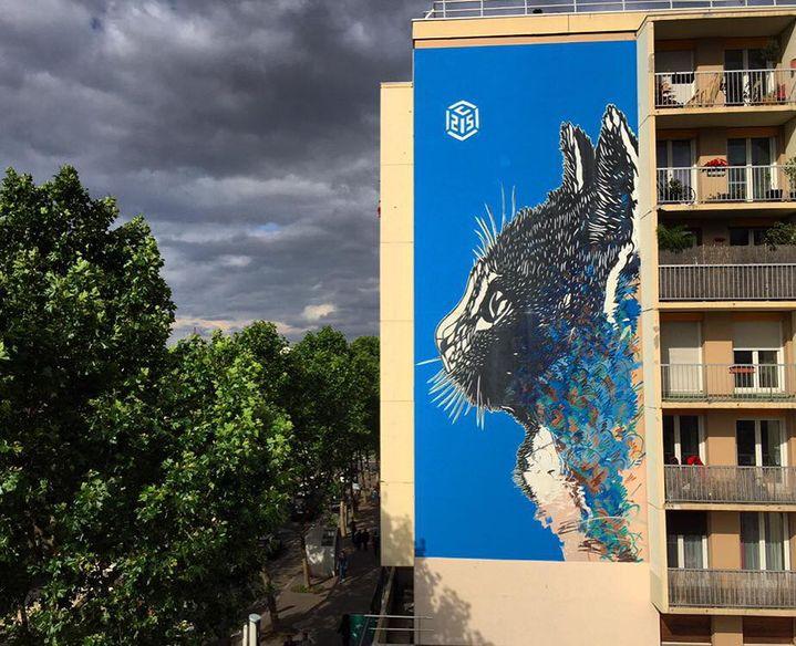 Le chat de C215, Boulevard Auriol, Paris 13e  (C215)