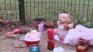 Un garçon de neuf ans est mort dans une école de Jujurieux (Ain), jeudi 27 novembre, après un choc allergique aigu. ( FRANCE 2 / FRANCETV INFO)