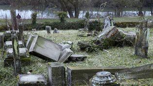 Des tombes profanées le long du ruisseau qui borde le cimetière juif de Sarre-Union (Bas-Rhin), le 17 février 2015. (VINCENT KESSLER / AFP)