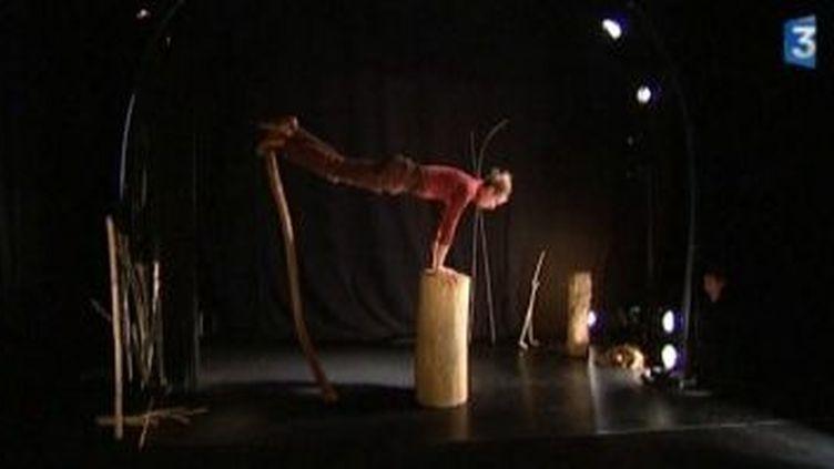 """La Maison du théâtre d'Amiens en équilibre avec """"Debout de bois""""  (Culturebox)"""