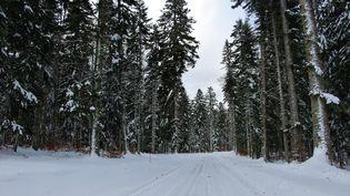 La neige est tombée en abondance ce vendredi 11 décembre 2020 dans les stations de ski du Vercors (Drôme). (CLAIRE LEYS / RADIOFRANCE)