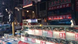 Le marché de gros de poissons et fruits de mer à Pékin, le 16 janvier 2018. (DOMINIQUE ANDRÉ / RADIO FRANCE)