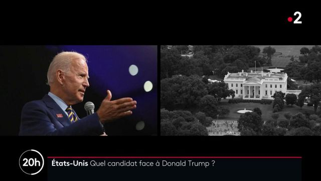 États-Unis : les électeurs doivent choisir l'adversaire de Donald Trump