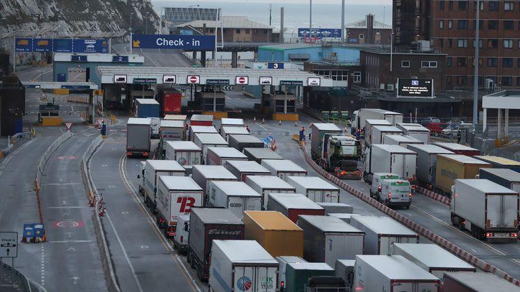 Des camions faisant la queue au port de Douvres sur la côte sud de l'Angleterre, le 19 mars 2018. (DANIEL LEAL-OLIVAS / AFP)