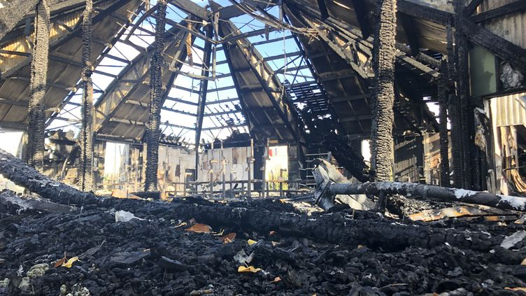 Le chapiteau de Chanteloup-les-Vignes, après l'incendie, le 4 novembre 2019. (JULIETTE CAMPION / FRANCEINFO)