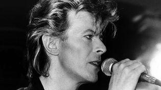 David Bowie en 1987.  (Martina Hellmann / DPA / AFP)
