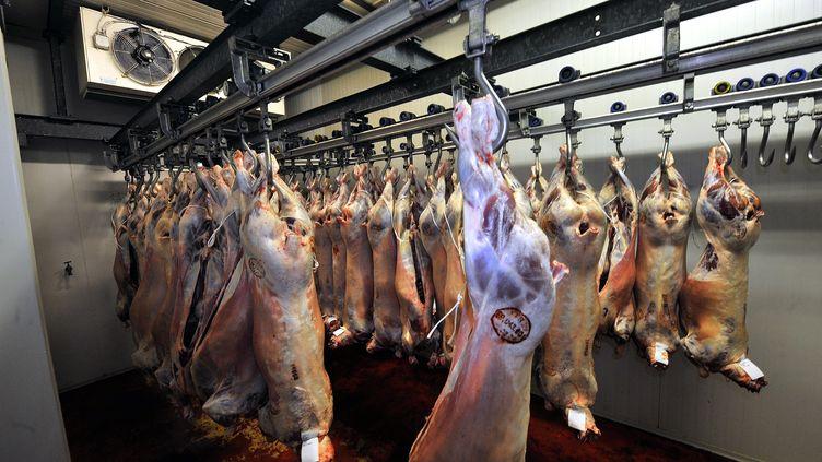 Des moutons sont suspendus dans l'abattoir de Bailleul (Nord), vertifié halal par la préfecture, le 4 janvier 2011. ( PIERRE LE MASSON / LA VOIX DU NORD / MAXPPP)