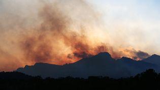 La fumée de l'incendie de Quenza, le 11 février 2020 à Sari-Solenzara (Haute-Corse). (PASCAL POCHARD-CASABIANCA / AFP)