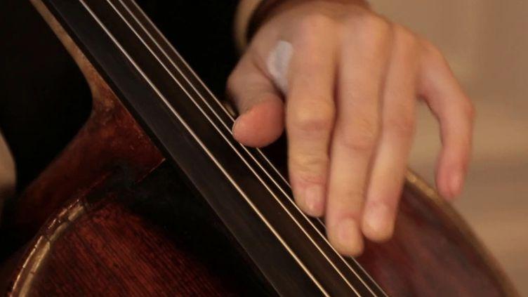 Musiciens classiques : comment maintenir l'excellence sans concerts ? (FRANCE 2)