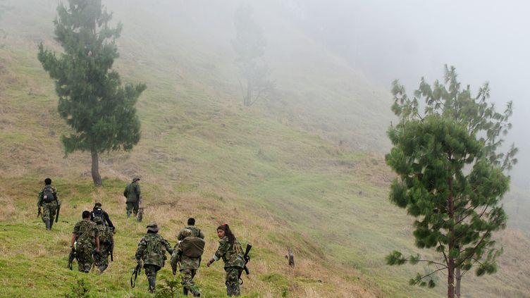 Des guérilleros des Farc en Colombie, le 12 juillet 2012. (LUIS ROBAYO / AFP)